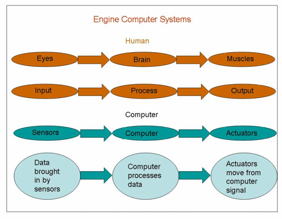 Input and output systems help to understand computer systesms on engines.